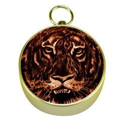 Eye Of The Tiger Gold Compasses