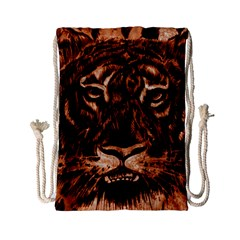 Eye Of The Tiger Drawstring Bag (small)