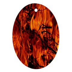 Fire Easter Easter Fire Flame Ornament (oval)