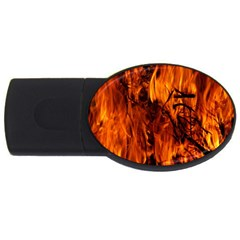 Fire Easter Easter Fire Flame USB Flash Drive Oval (4 GB)