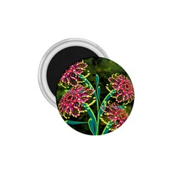 Flowers Abstract Decoration 1.75  Magnets