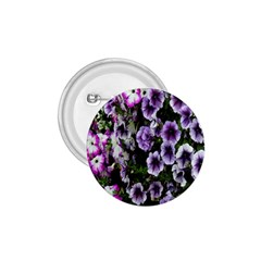 Flowers Blossom Bloom Plant Nature 1.75  Buttons