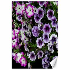 Flowers Blossom Bloom Plant Nature Canvas 12  x 18