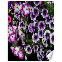 Flowers Blossom Bloom Plant Nature Canvas 18  X 24