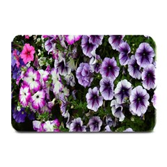 Flowers Blossom Bloom Plant Nature Plate Mats