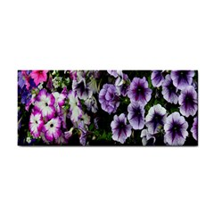 Flowers Blossom Bloom Plant Nature Cosmetic Storage Cases