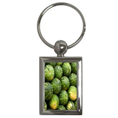 Food Summer Pattern Green Watermelon Key Chains (Rectangle)