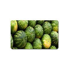 Food Summer Pattern Green Watermelon Magnet (Name Card)