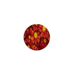 Flowers Nature Plants Autumn Affix 1  Mini Magnets