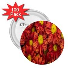 Flowers Nature Plants Autumn Affix 2.25  Buttons (100 pack)