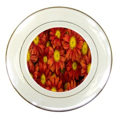 Flowers Nature Plants Autumn Affix Porcelain Plates