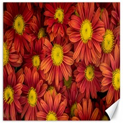 Flowers Nature Plants Autumn Affix Canvas 16  X 16