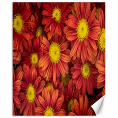 Flowers Nature Plants Autumn Affix Canvas 16  X 20