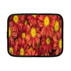Flowers Nature Plants Autumn Affix Netbook Case (Small)