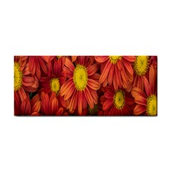 Flowers Nature Plants Autumn Affix Cosmetic Storage Cases