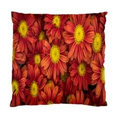 Flowers Nature Plants Autumn Affix Standard Cushion Case (two Sides)