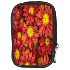 Flowers Nature Plants Autumn Affix Compact Camera Cases