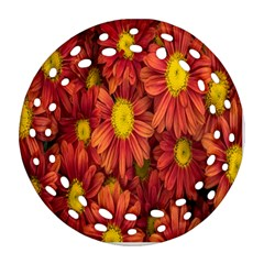 Flowers Nature Plants Autumn Affix Round Filigree Ornament (Two Sides)