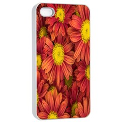 Flowers Nature Plants Autumn Affix Apple iPhone 4/4s Seamless Case (White)