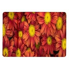 Flowers Nature Plants Autumn Affix Samsung Galaxy Tab 10.1  P7500 Flip Case