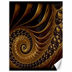 Fractal Spiral Endless Mathematics Canvas 12  x 16