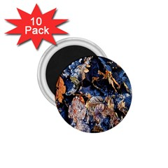 Frost Leaves Winter Park Morning 1 75  Magnets (10 Pack)