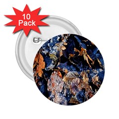 Frost Leaves Winter Park Morning 2.25  Buttons (10 pack)