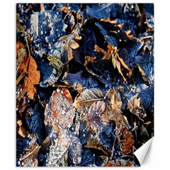 Frost Leaves Winter Park Morning Canvas 8  x 10