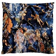 Frost Leaves Winter Park Morning Large Cushion Case (Two Sides)