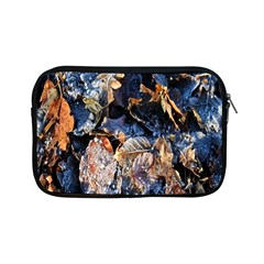 Frost Leaves Winter Park Morning Apple iPad Mini Zipper Cases
