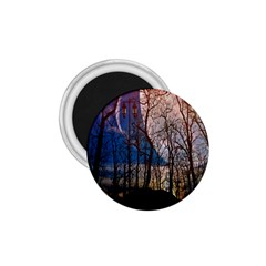 Full Moon Forest Night Darkness 1 75  Magnets
