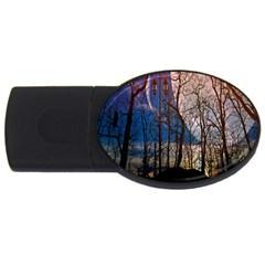 Full Moon Forest Night Darkness USB Flash Drive Oval (1 GB)