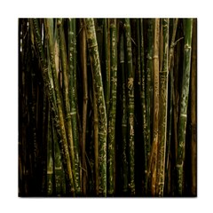 Green And Brown Bamboo Trees Tile Coasters