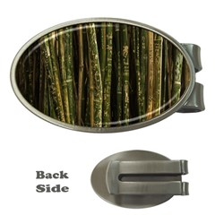 Green And Brown Bamboo Trees Money Clips (Oval)
