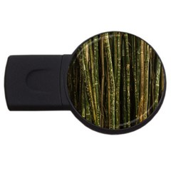 Green And Brown Bamboo Trees Usb Flash Drive Round (2 Gb)