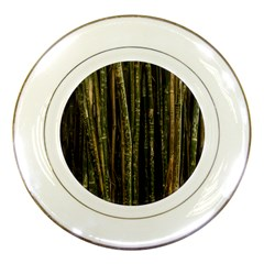 Green And Brown Bamboo Trees Porcelain Plates