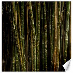 Green And Brown Bamboo Trees Canvas 12  X 12