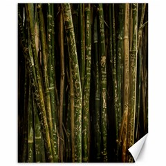 Green And Brown Bamboo Trees Canvas 16  x 20