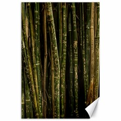 Green And Brown Bamboo Trees Canvas 24  x 36