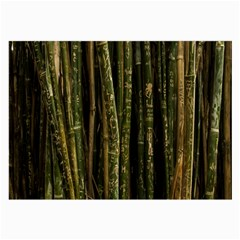 Green And Brown Bamboo Trees Large Glasses Cloth