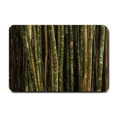 Green And Brown Bamboo Trees Small Doormat