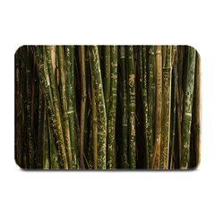 Green And Brown Bamboo Trees Plate Mats
