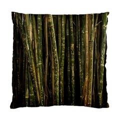 Green And Brown Bamboo Trees Standard Cushion Case (Two Sides)