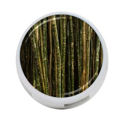 Green And Brown Bamboo Trees 4-Port USB Hub (Two Sides)