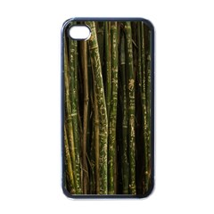 Green And Brown Bamboo Trees Apple iPhone 4 Case (Black)