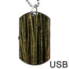 Green And Brown Bamboo Trees Dog Tag USB Flash (Two Sides)