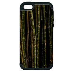 Green And Brown Bamboo Trees Apple Iphone 5 Hardshell Case (pc+silicone)