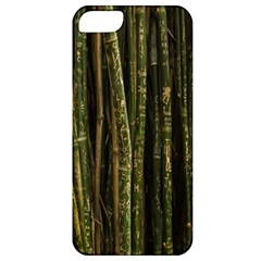 Green And Brown Bamboo Trees Apple iPhone 5 Classic Hardshell Case