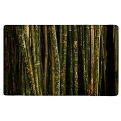 Green And Brown Bamboo Trees Apple Ipad 3/4 Flip Case
