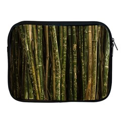 Green And Brown Bamboo Trees Apple Ipad 2/3/4 Zipper Cases